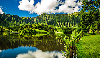 Hawai-honolulu (4)-s
